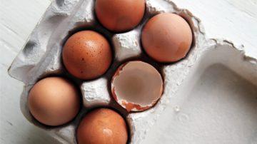 Essentielle und Nicht-Essentielle Aminosäuren: Eine andere Sichtweise – Teil 1