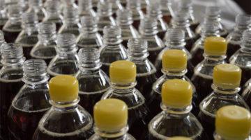 Darm, Schwermetalle und Umweltgifte