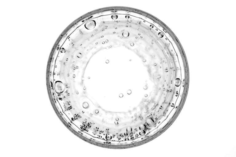Darmbakterien: Milliarden alte Evolutionsgeschichte