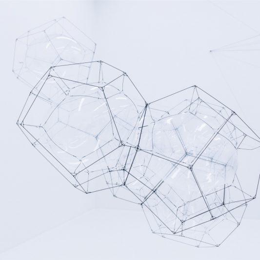 Struktur bestimmt Funktion